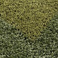 Covor M135 Shaggy Verde Dreptunghi Polipropilena
